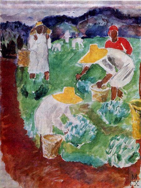 Ф.В. Антонов. Картина : Сбор чая. 1933. Бумага, кар., акварель. 48х36