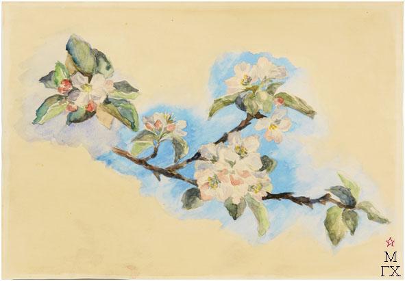 Е.М. Ануфриева. Картина : Ветка яблони