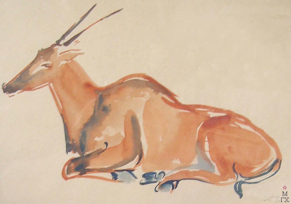 П.Н. Чернышева. Картина : Антилопа гну. 1960 г. Бум., акв. 21х29,7