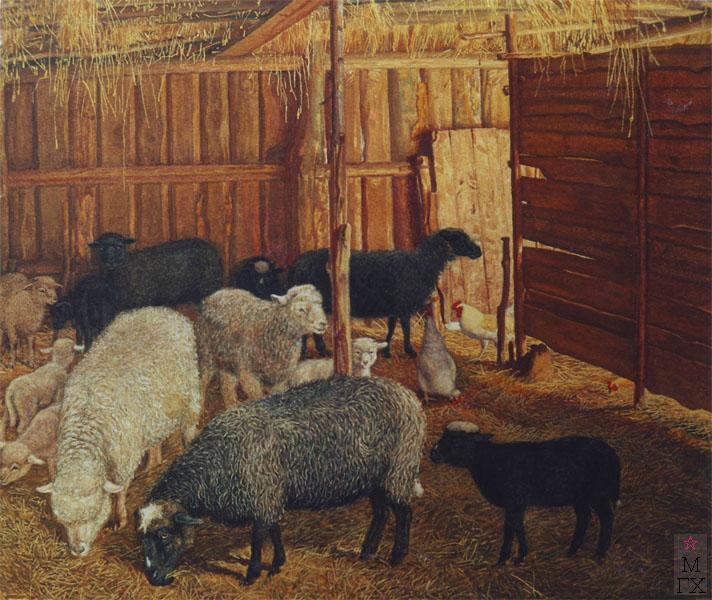 М.И. Климентов. Картина : овцы в хлеву.1945. 27,8х31, акварель.